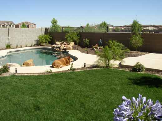 New yard after landscape Design from Az Living Landscape