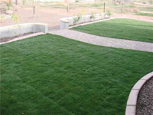 Raised yard with grass and pavers