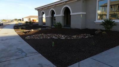 front yard landscaping arizona desert